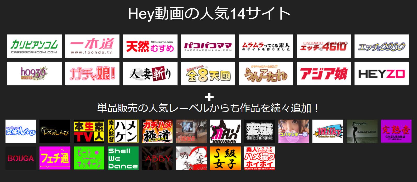 Hey動画見放題プランの配信元サイト(プロバイダー)