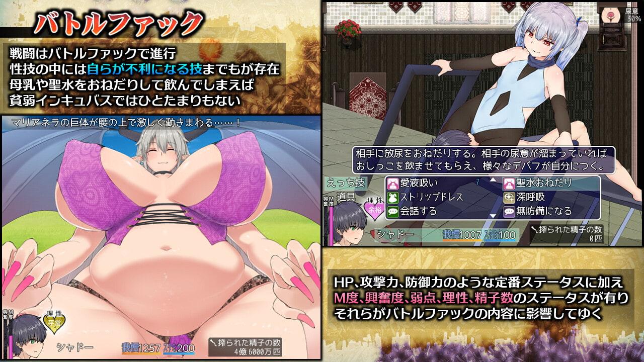 インキュバスクエスト【アダルトゲーム】(スウィートラズベリー)2