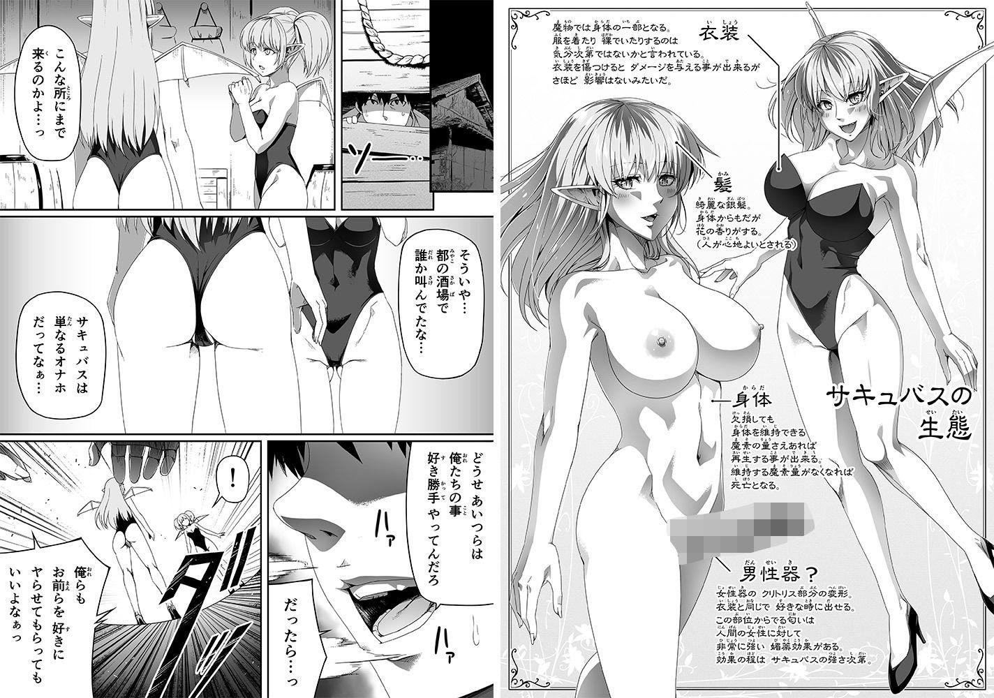 力あるサキュバスは性欲を満たしたいだけ2【同人エロ漫画】(Road=ロード=)1